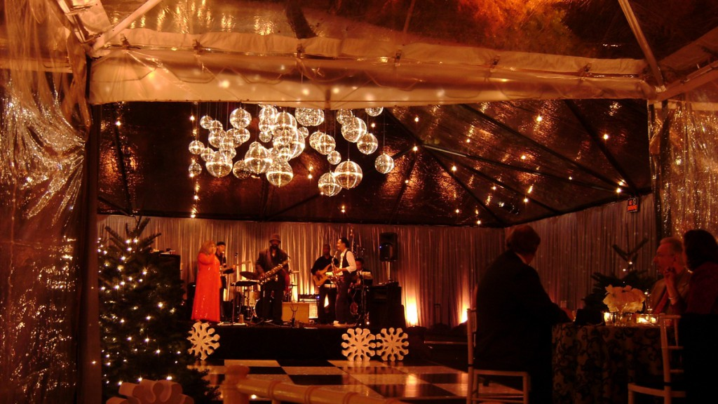 Holiday Disco Ball Cluster With String Lighting In Clear Canopy