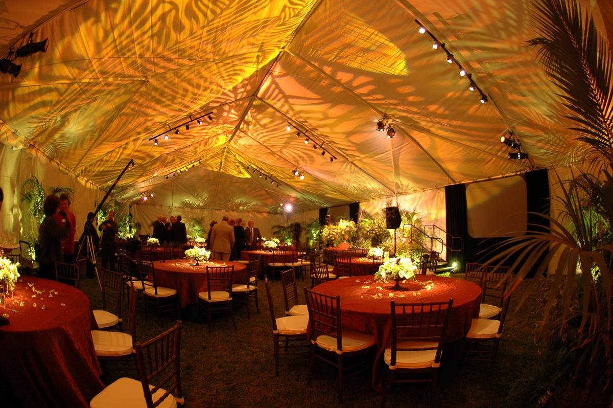 Canopy Ceiling Wash Fern Leaf Gobo Bella Vista Designs